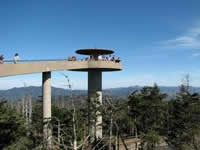 Clingman's Dome in Great Smoky Mountains in TN.