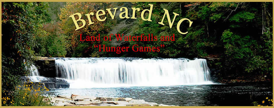 Fun things to do in Brevard NC